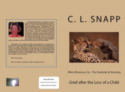 When Momma's Cry, the Darkside of Yearning; Grief After the Loss of a Child - eBook