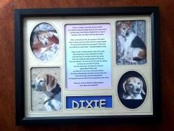 Personalized Pet Memorial Frame with Pet's Name and Rainbow Bridge Poem