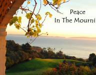Peace In The Mourning - Alan Pedersen